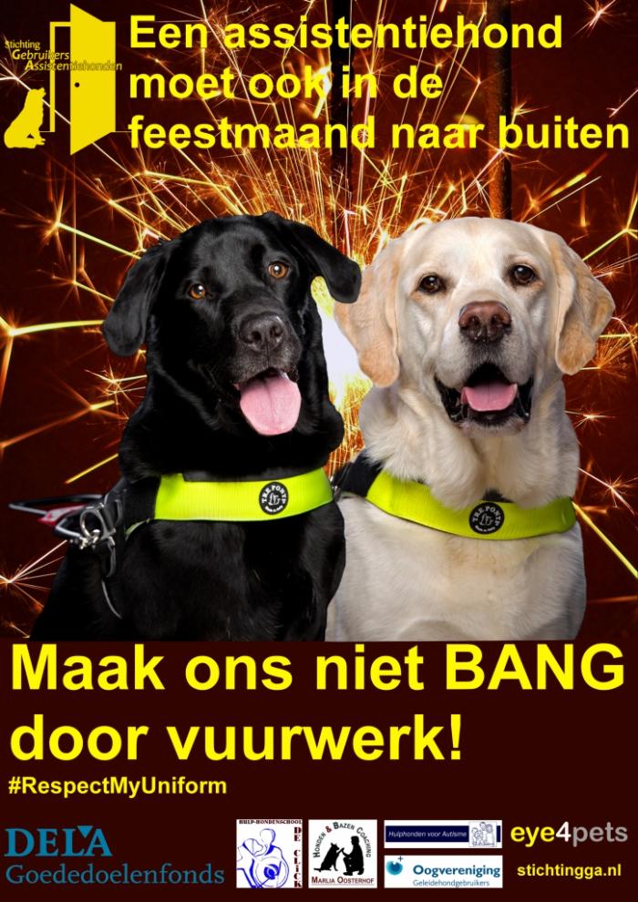 Het gevaar van vuurwerk bij assistentiehonden
